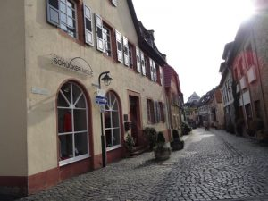 2016-okt-23-hochheim-delkenheim-ivv-198