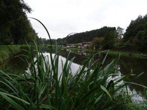 2016-okt-9-niederelbert-103