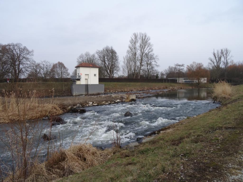 Grüngürtel: Höchst – Berkersheim, 12 Februar 2017