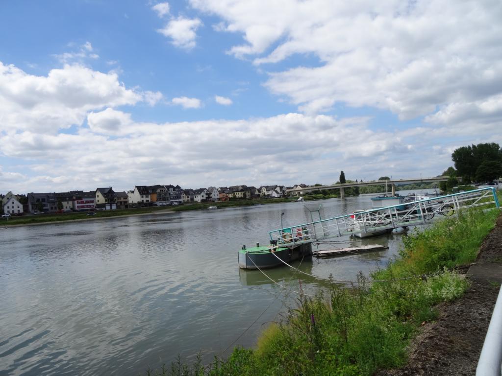 Koblenzer Rhein Runde, 18 Juni 2017
