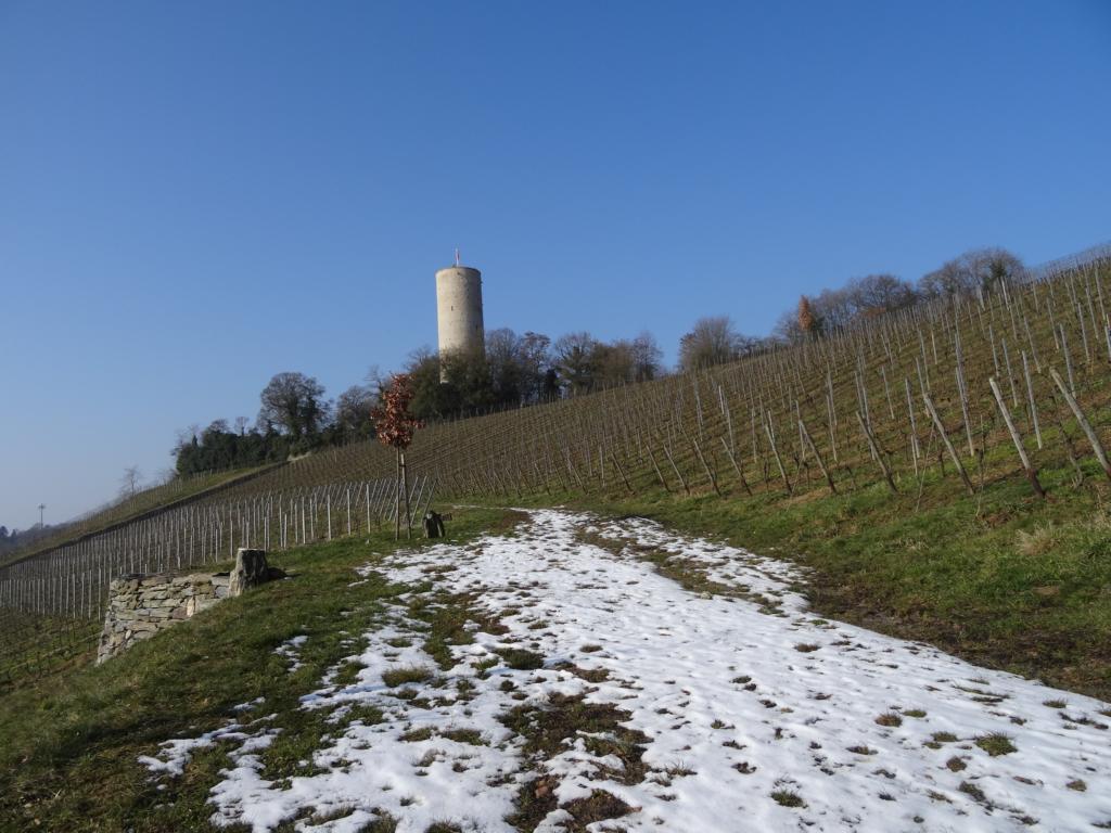 Eltville – Kiedrich – Rheingau, 18 Februar 2018